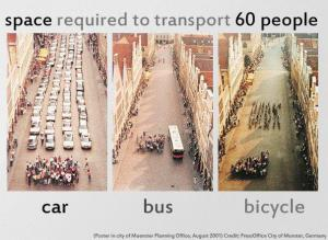 Car, bus or bicycle?